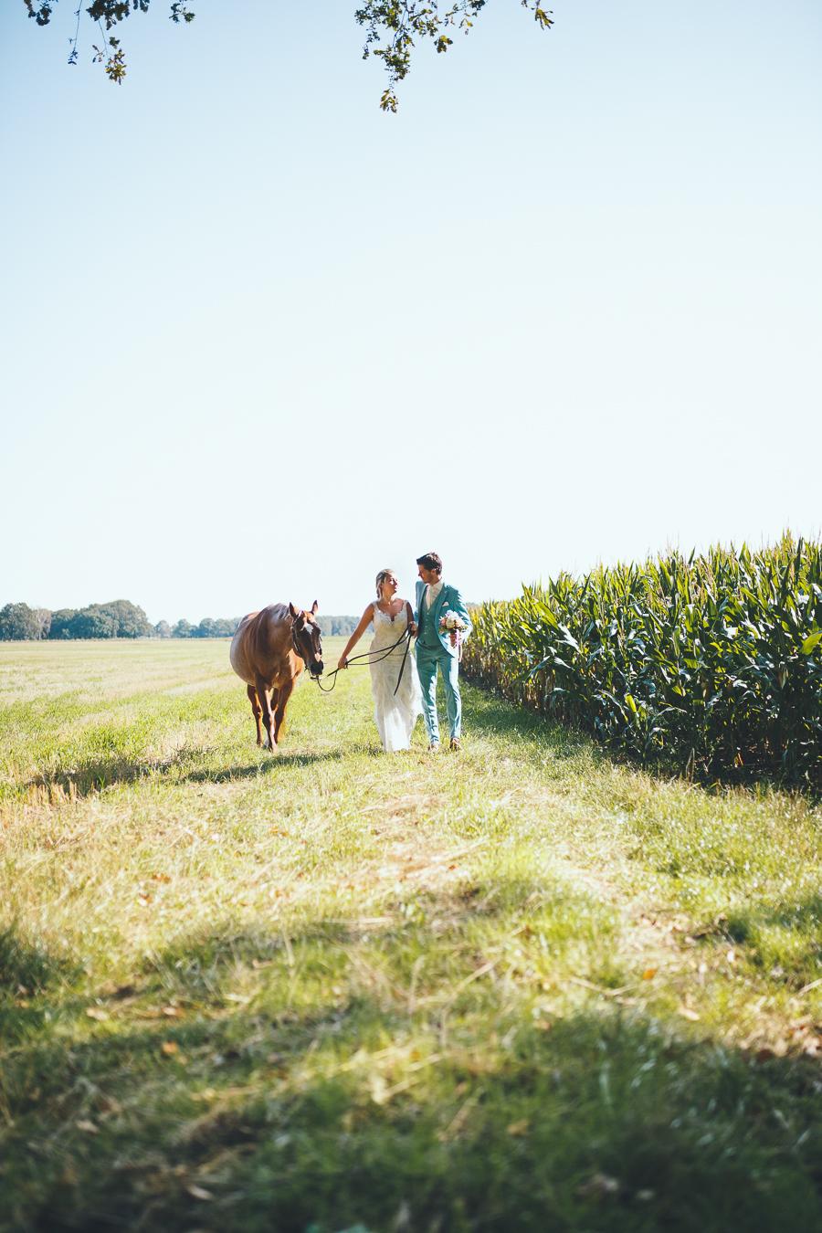 Bruid en bruidegom lopen naast elkaar in een weiland en maisveld samen met een paard tijdens bruiloft thuis op erf van oude boerderij trouwfotograaf Apeldoorn