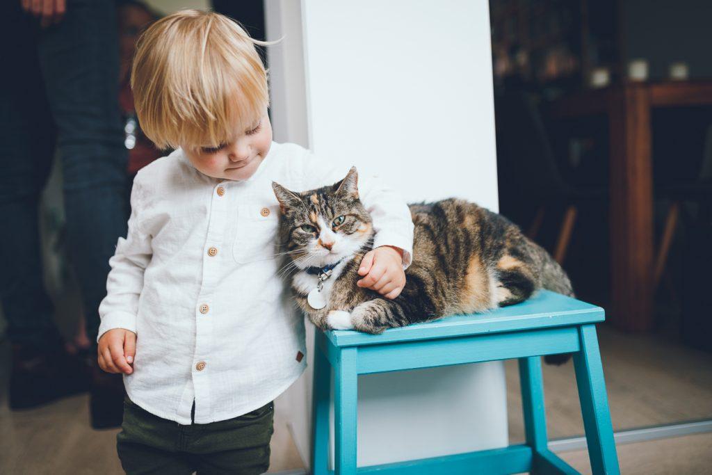 Jongetje in wit overhemd omhelst kat op turquoise bankje tijdens bruiloft in fruittuin trouwfotograaf Amsterdam Apeldoorn