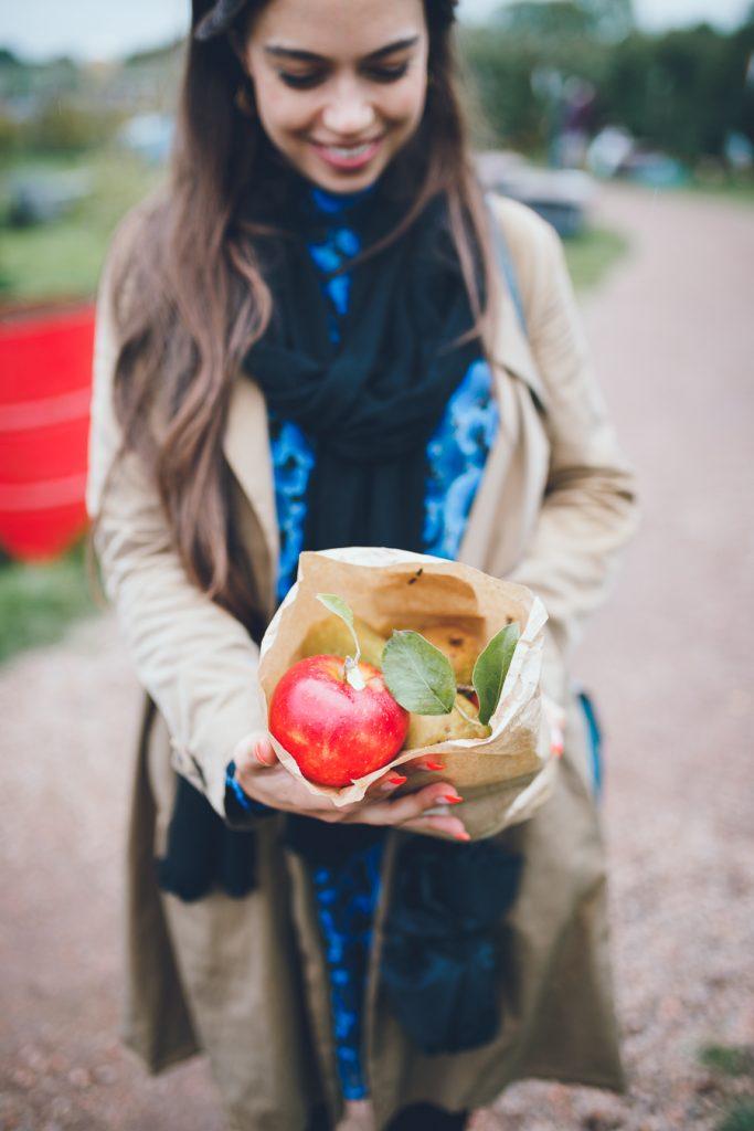 Appels in zakje tijdens bruiloft in fruittuin trouwfotograaf Amsterdam Apeldoorn